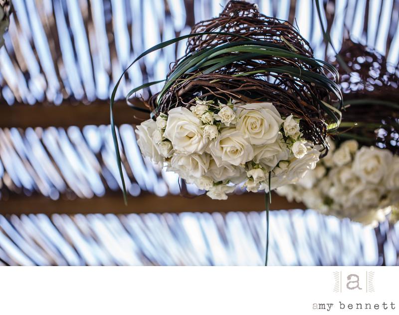 hanging white roses