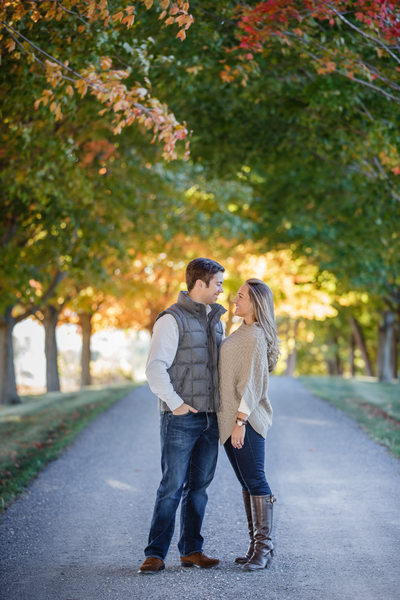 Engaged Couple Framed by Vermont Maple Trees