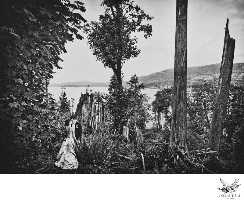 Stanley Park wedding photographer forest scene