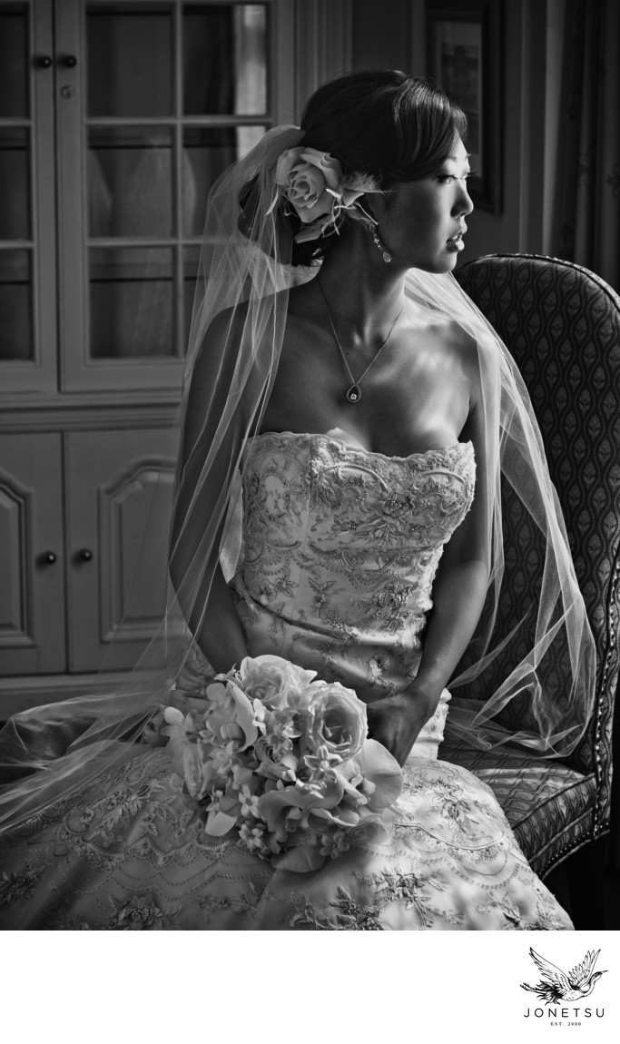 Classic luxury bridal portrait in window light
