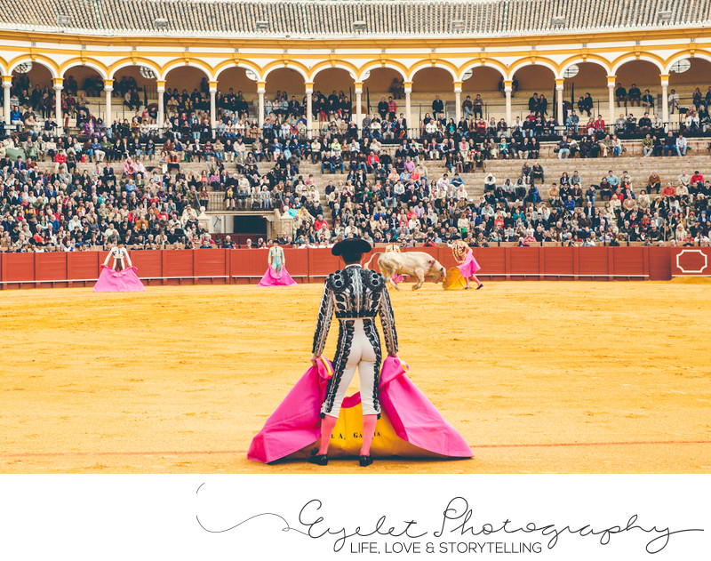 Matador De Toros Bull Fight Photography