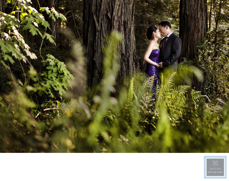 Forest Engagement Photographer SF Bay Area