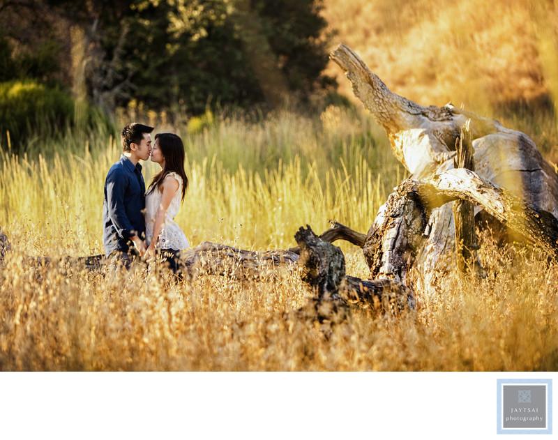 Wild Open Field Engagement Photographer San Francisco
