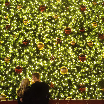 Christmas Tree Engagement Photographer San Francisco