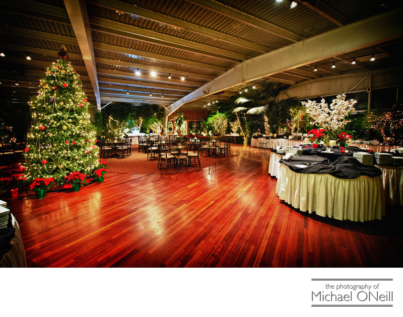 Best Flowerfield St. James Christmas Wedding Decorations Photographer