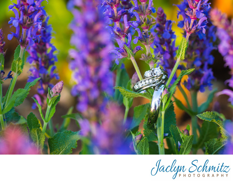Inn at Shelburne Farms Wedding Photography VT