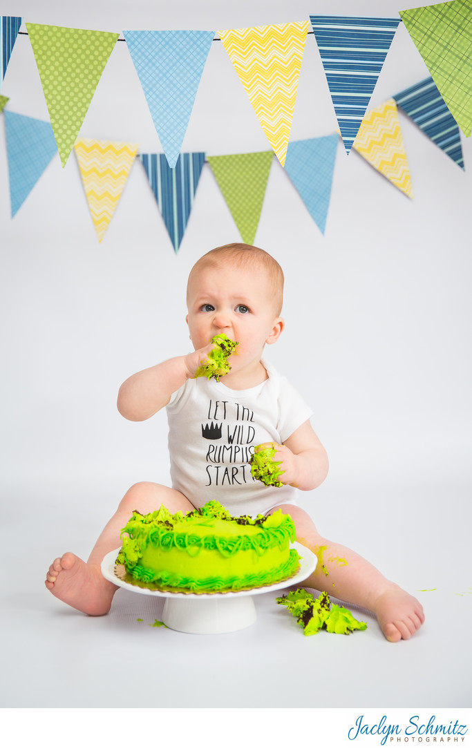 cake smash one year photos Burlington VT