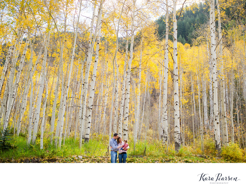 Family Photographs With Aspen Trees In Vail In The Fall