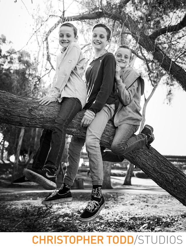 Three Boys on a Tree