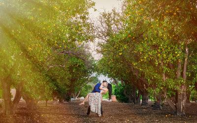 California State University Northridge Photographer