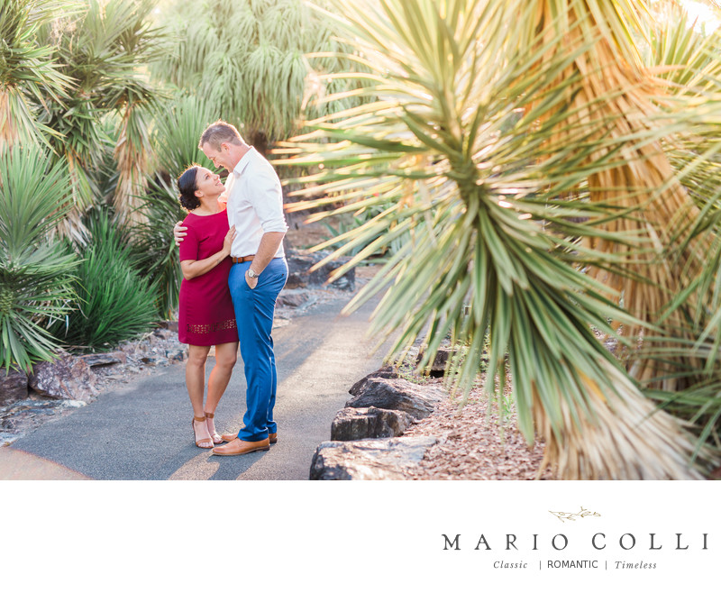 Best gold coast wedding photographer mount coot-tha