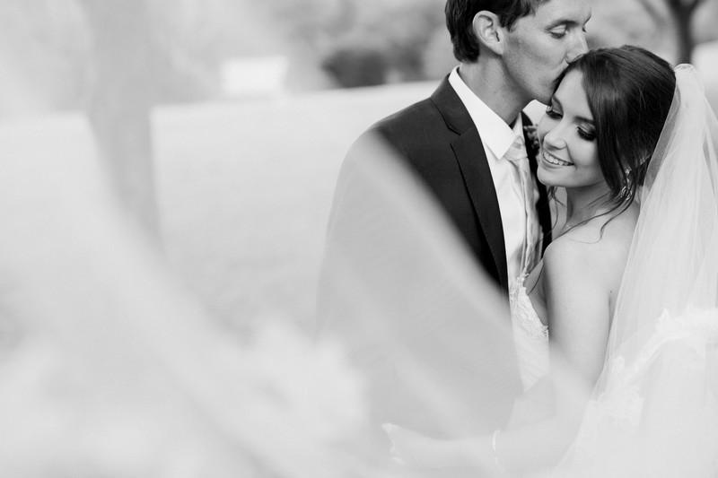 Veil photo bride groom wedding