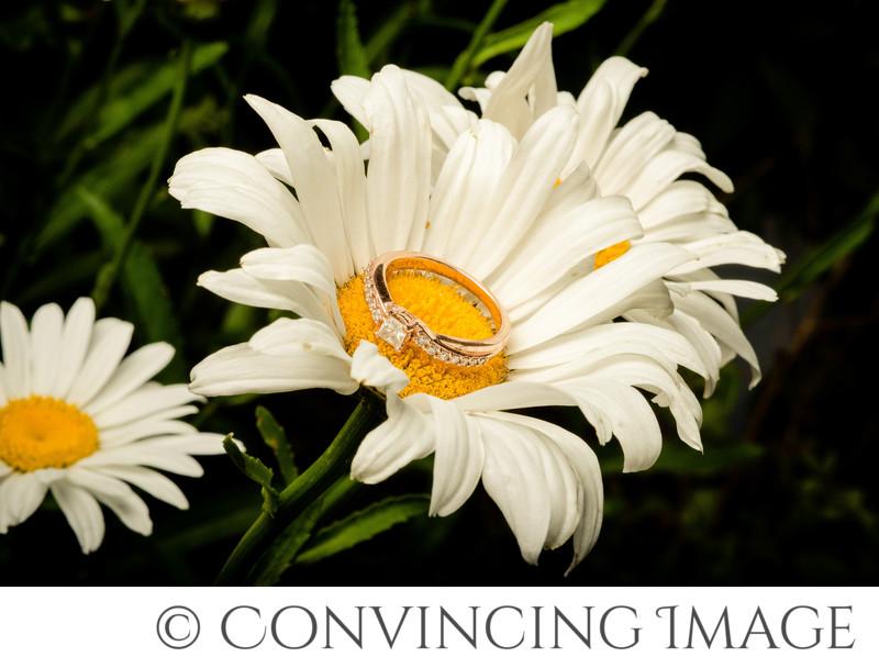 Engagement Ring Photos Utah