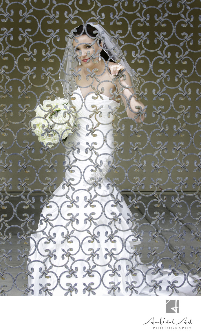 Stunning Bride looking through a gate at her wedding.  Wolf Lakes