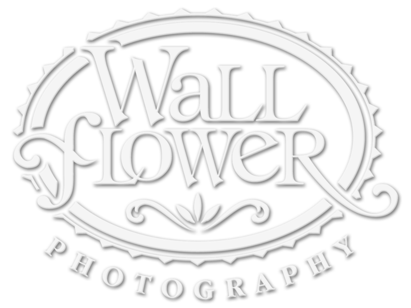 Logo for Wallflower Photography of Tacoma, Washington