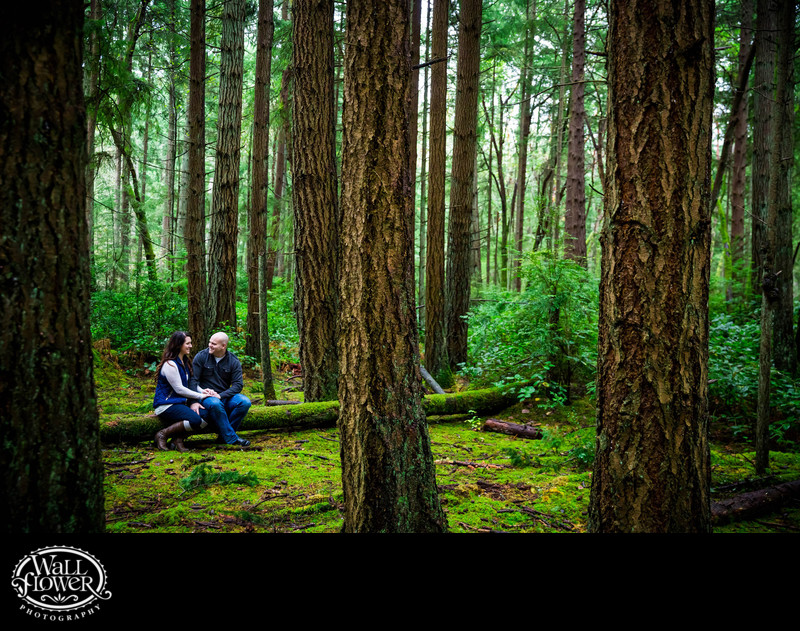 Engagement portrait of couple on mossy forest log