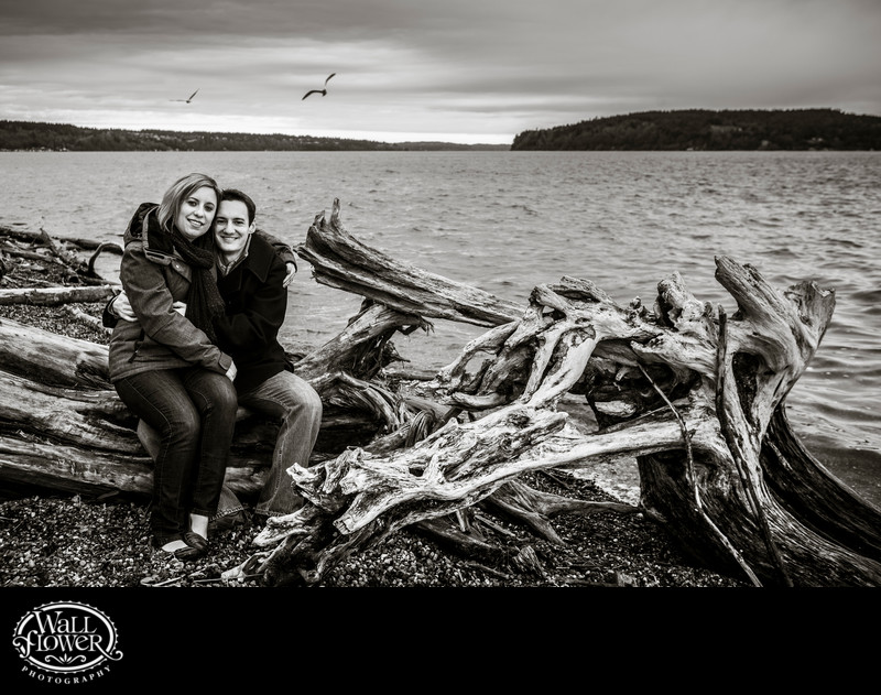 Engagement portrait with Owen Beach driftwood, seagulls