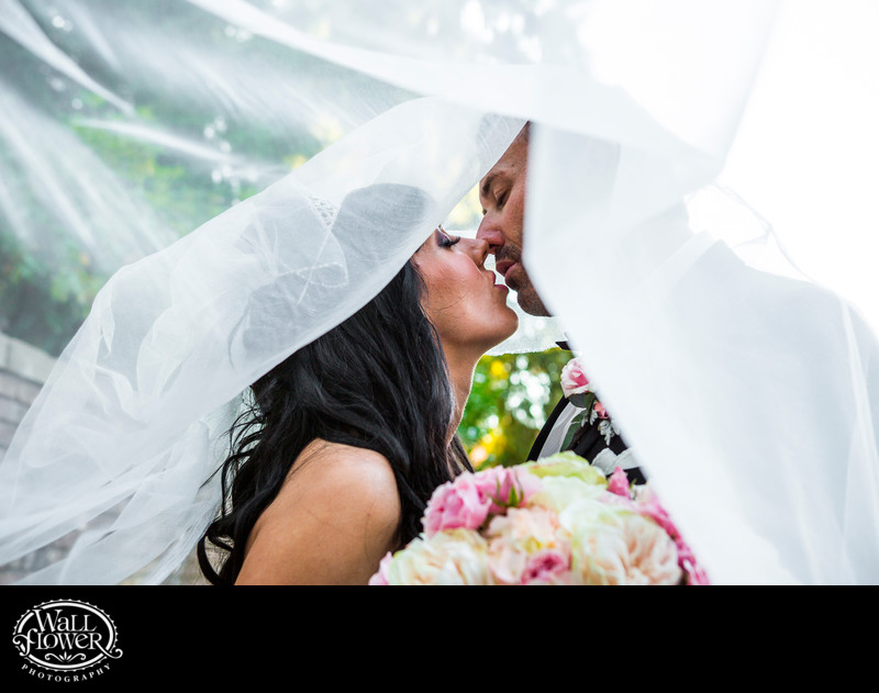 Bride and groom on verge of kiss, from under veil