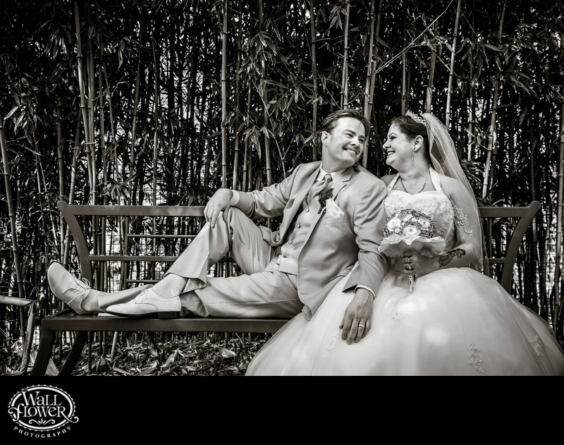 Groom leans on sitting bride at Point Defiance Zoo