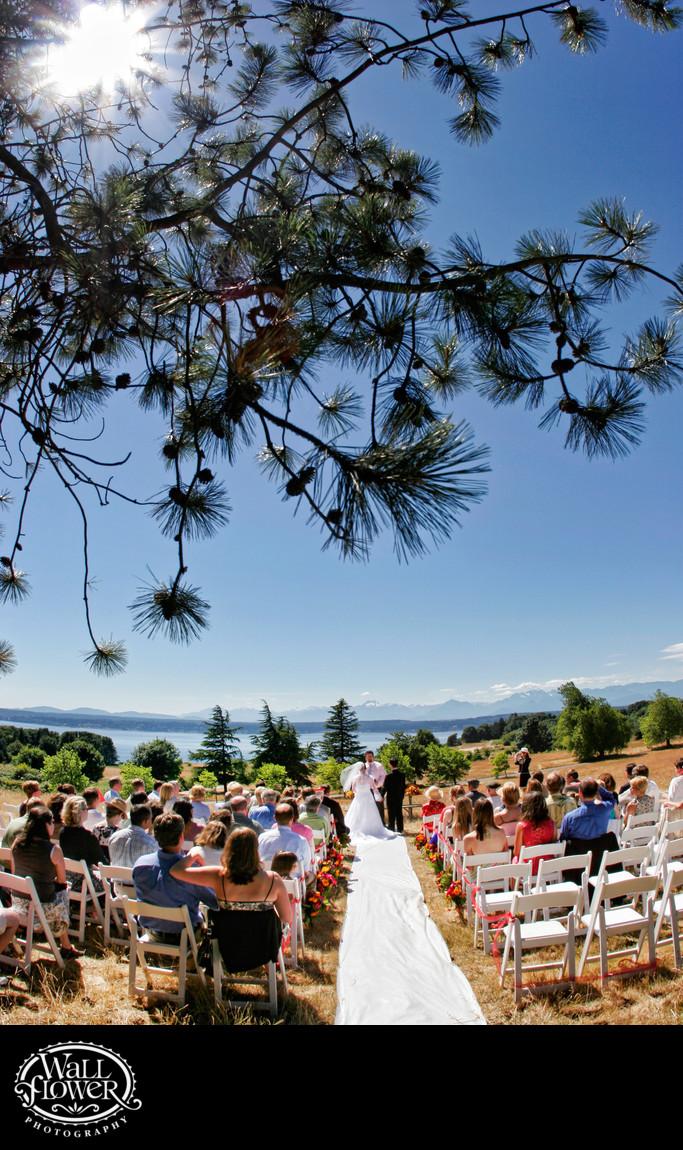 Sun, pine boughs frame Volunteer Park wedding ceremony