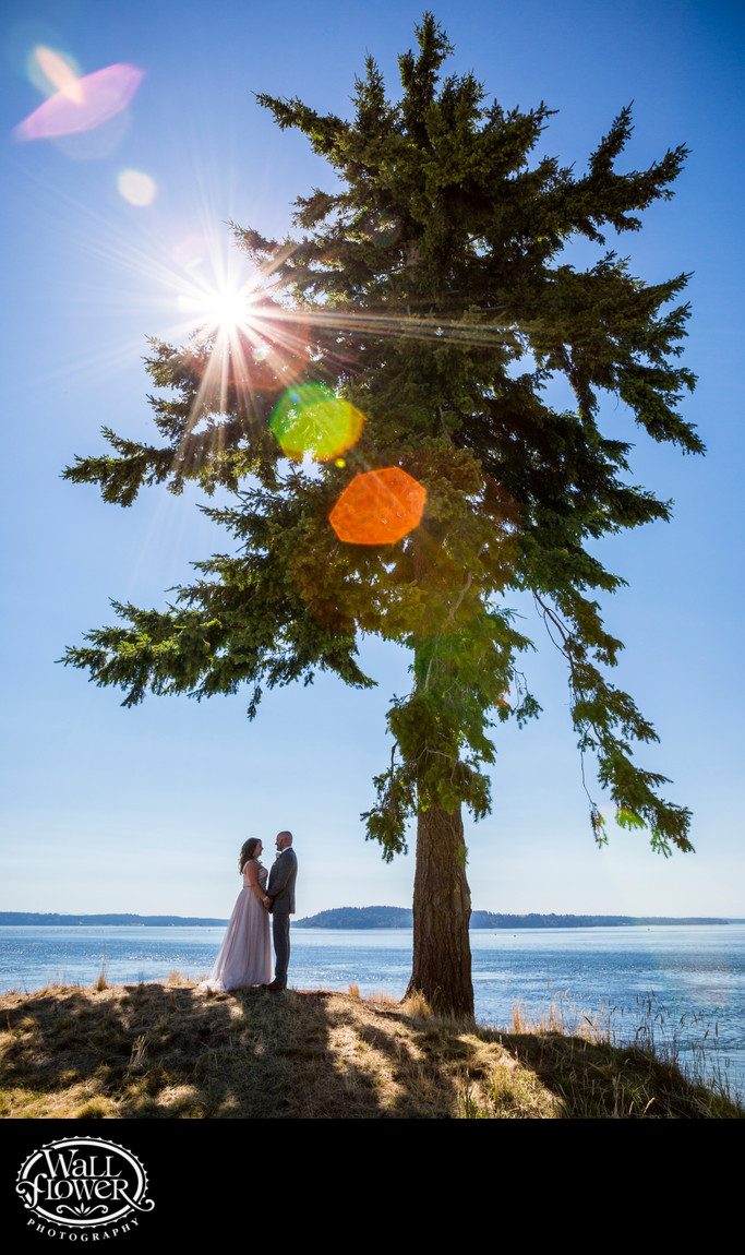 Bride and groom by Lone Fir at Chambers Bay Golf Course