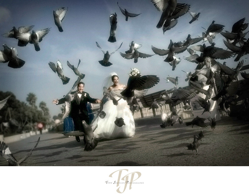 Ventura Wedding photography