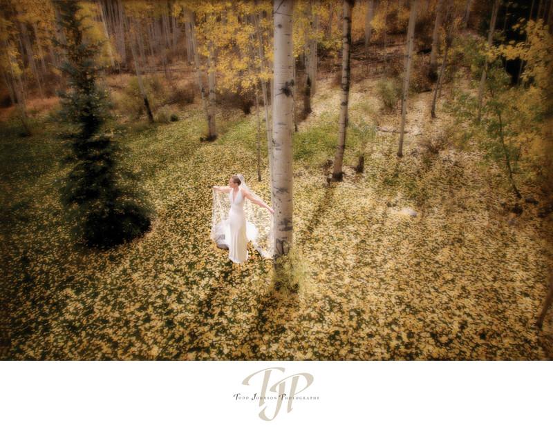 Veil Colorado wedding