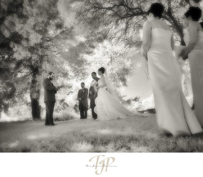 Mulit Cultural wedding