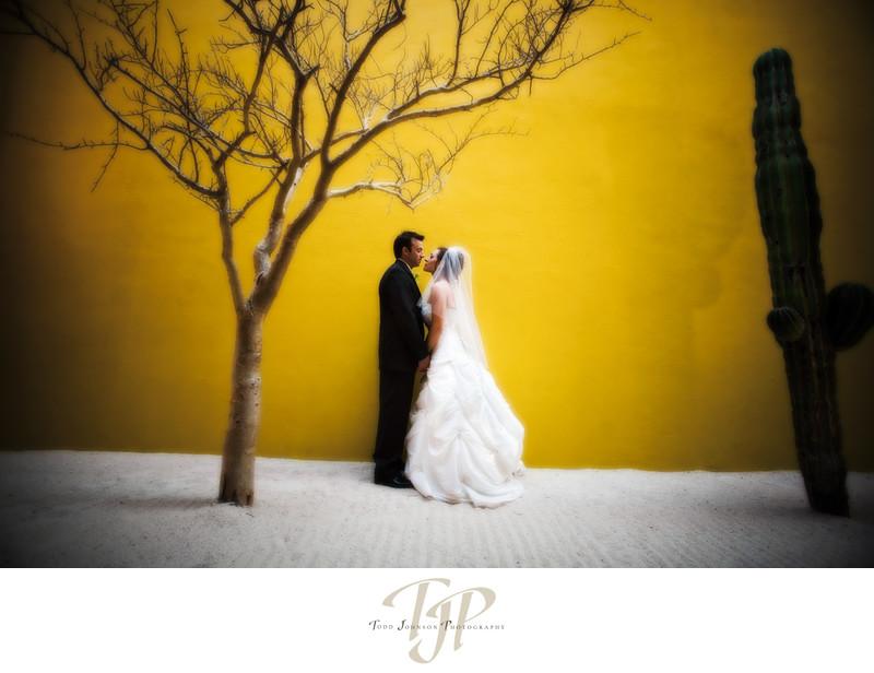 Baja wedding