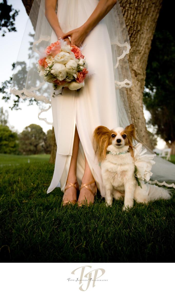 Ojai Valley Inn wedding