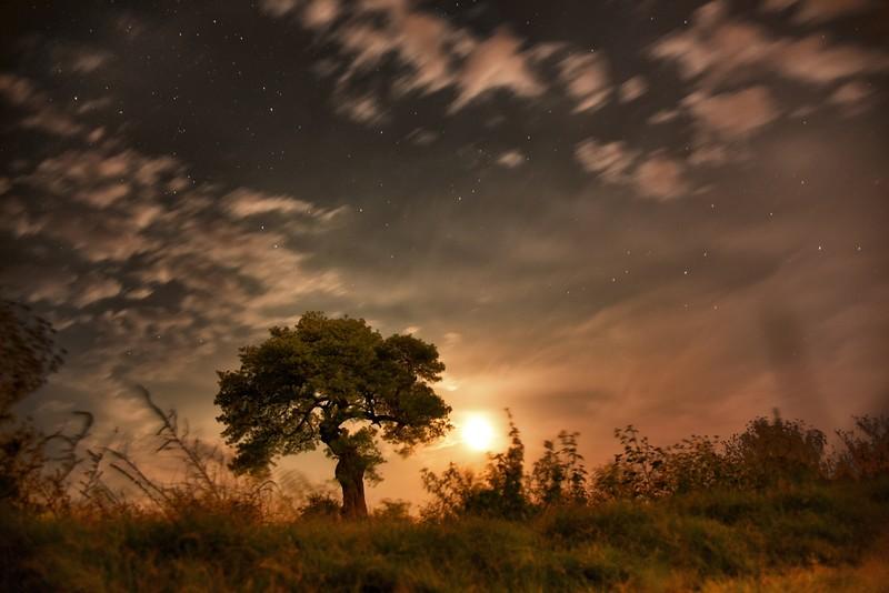 Evening Photography San Antonio