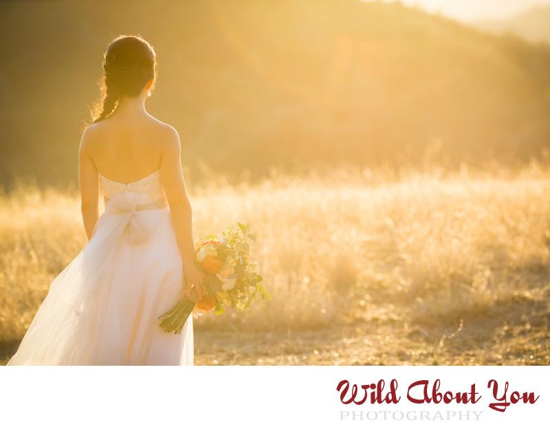 romantic sf bay area mount diablo wedding photographer