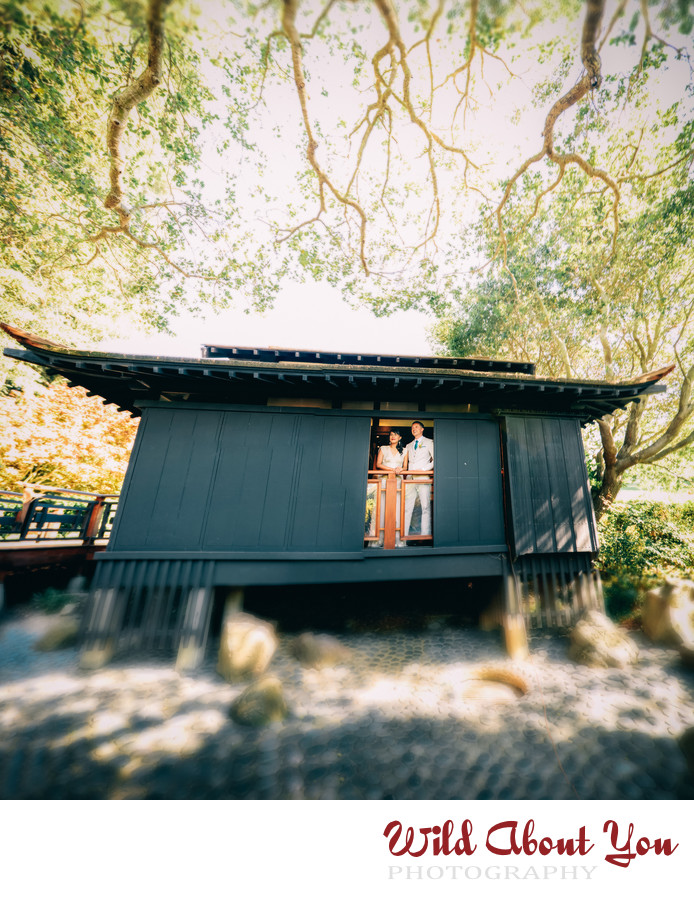 best piedmont wedding photographer