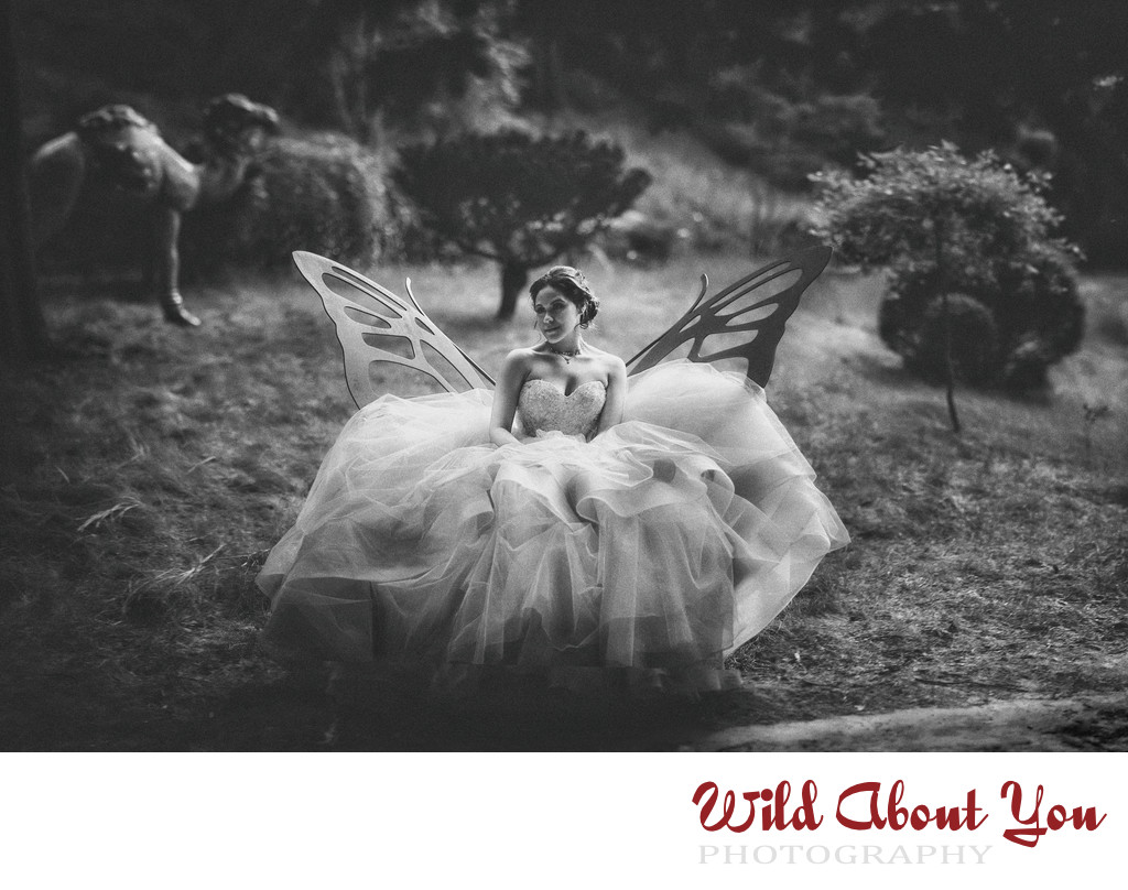 bay area fantasy wedding photography