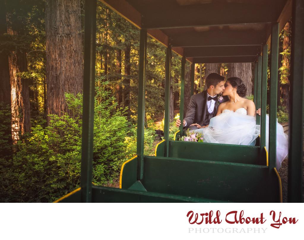 beautiful nestldown wedding photographer