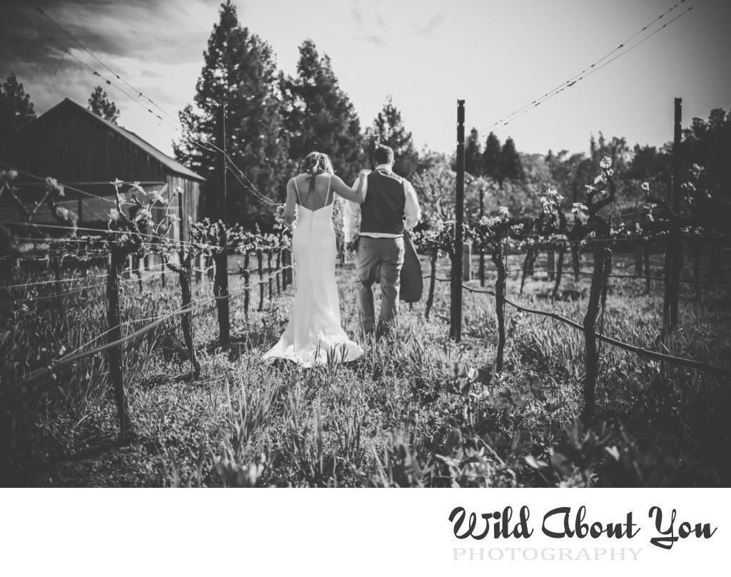 vineyard napa wedding photographer