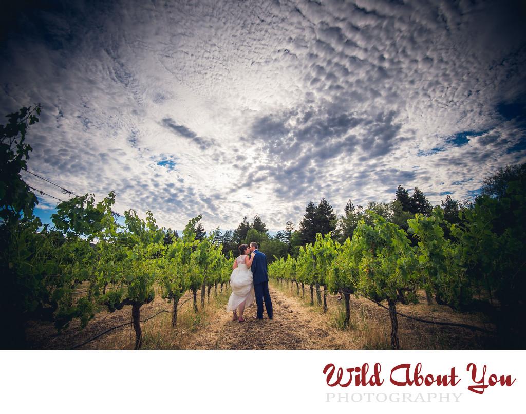 best wine country wedding photographer