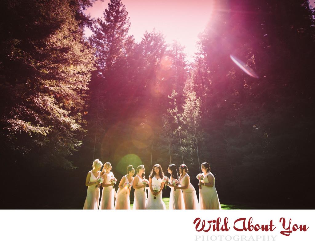 gorgeous nestldown wedding photographer