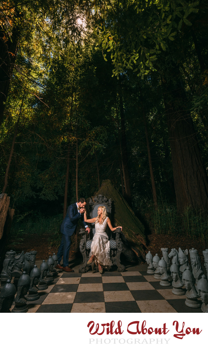 bay area fantasy wedding photographers
