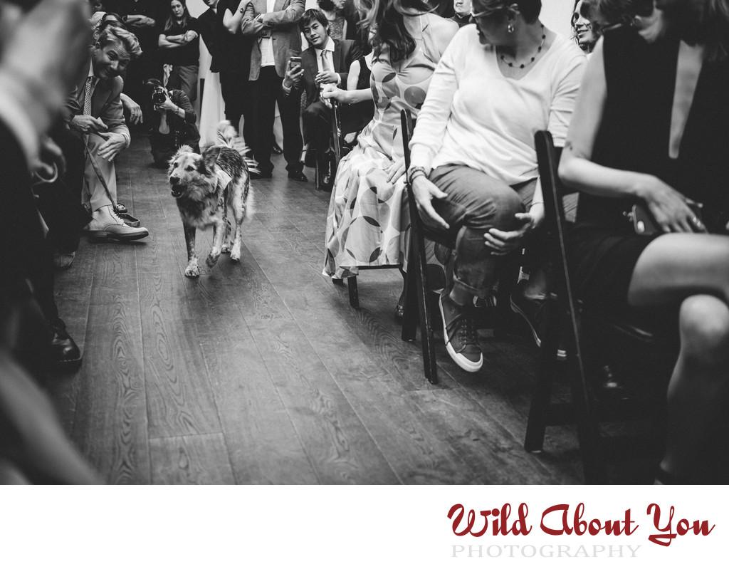 firehouse sf wedding photographer