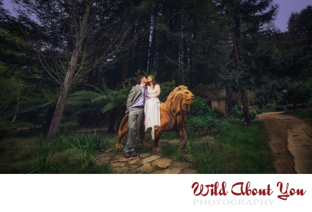 fantasy nestldown wedding photographers