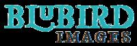 BluBird Images