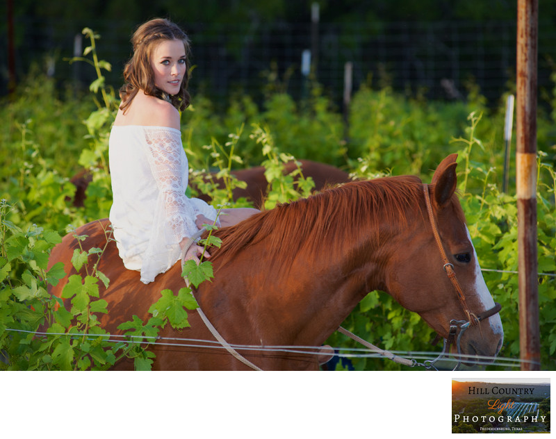 Bride on horseback in the vineyard at Hawks Shadow