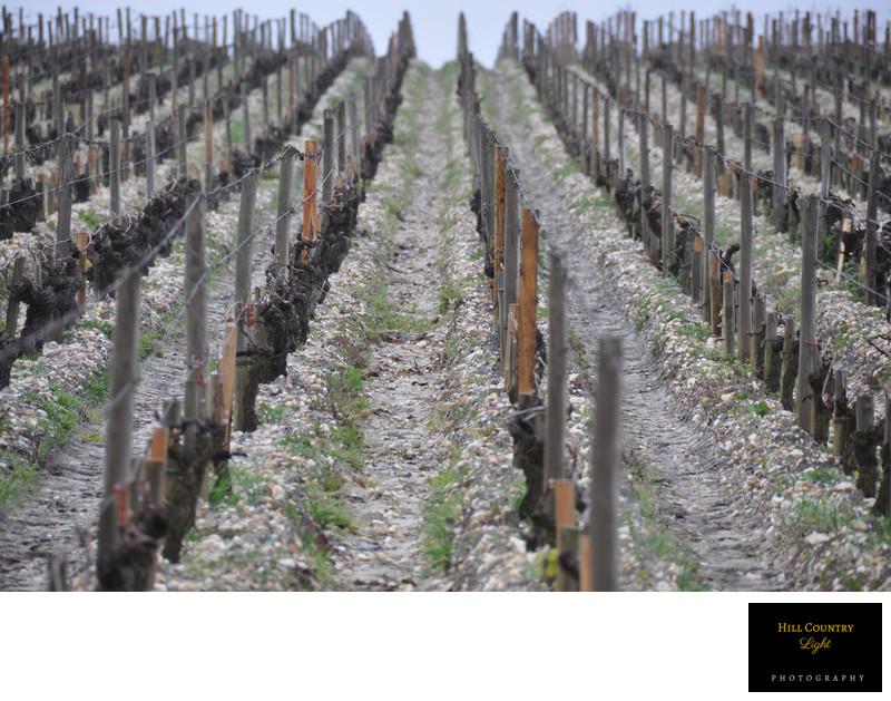 Elevation of Chateau Haut Brion Vineyard Bordeaux World Class Vineyard