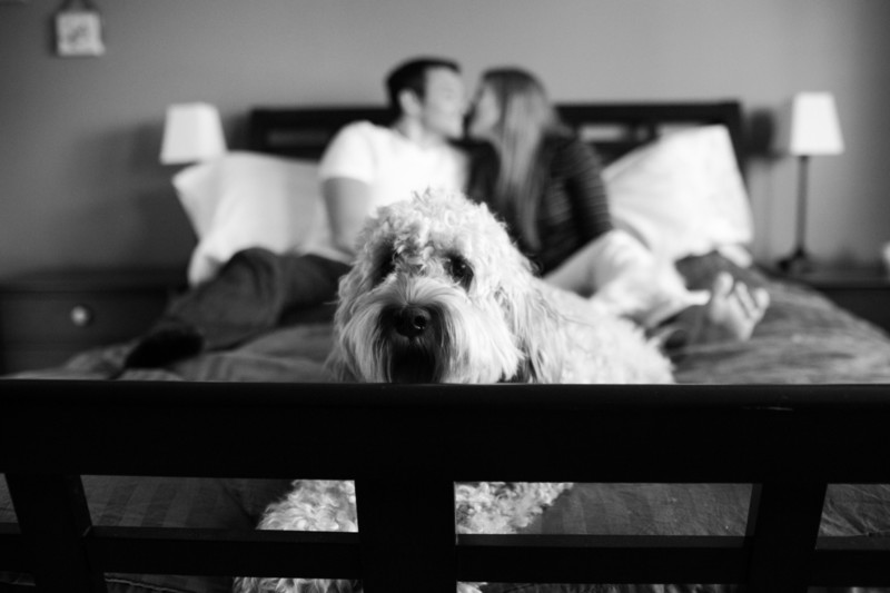 Home Engagement Photographs with Dog | Seattle | Snoqualmie