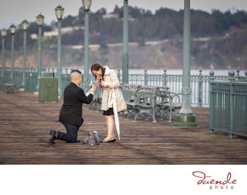 San Francisco Pier 7 Surprise Proposal_069