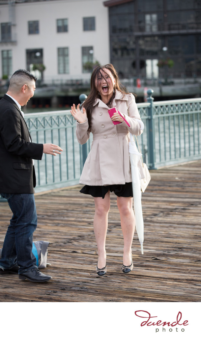 San Francisco Pier 7 Surprise Proposal_029