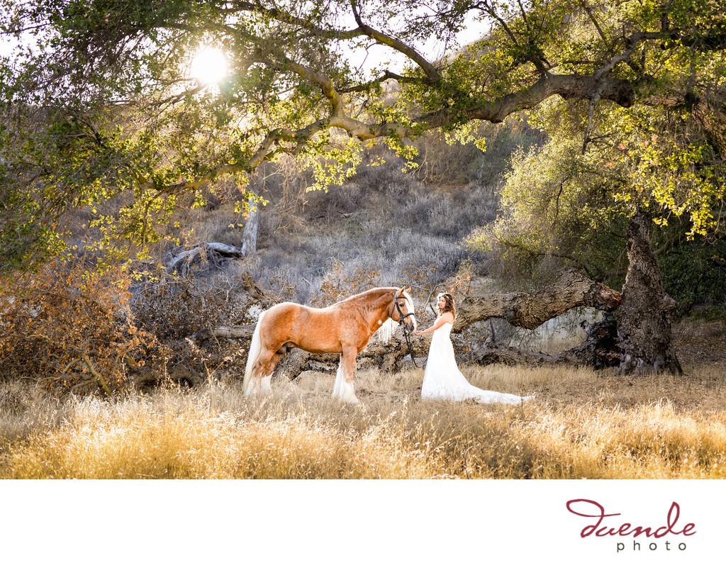 Best equestrian wedding photographer