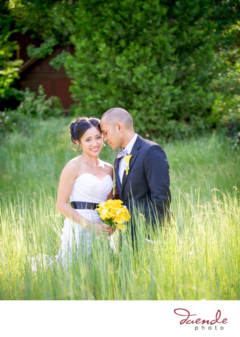 Bride and Groom in Yosemite Meadow