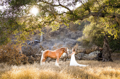 Best equestrian wedding photographer